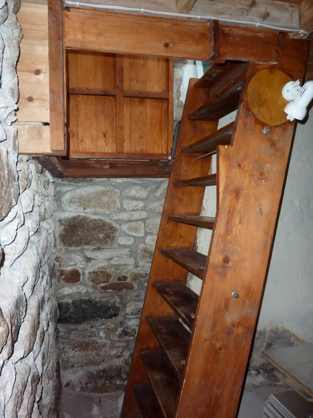 "The ""stairs"" (many would call this a ladder) before we started this project."